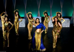 A fast paced, high intensity Bollywood dance show by a troupe of professional dancers in beautiful and elaborate costumes.